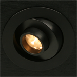 Gizmo Downlight